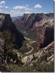 450px-Zion_National_Park_near_Observation_Point_2005_08_21