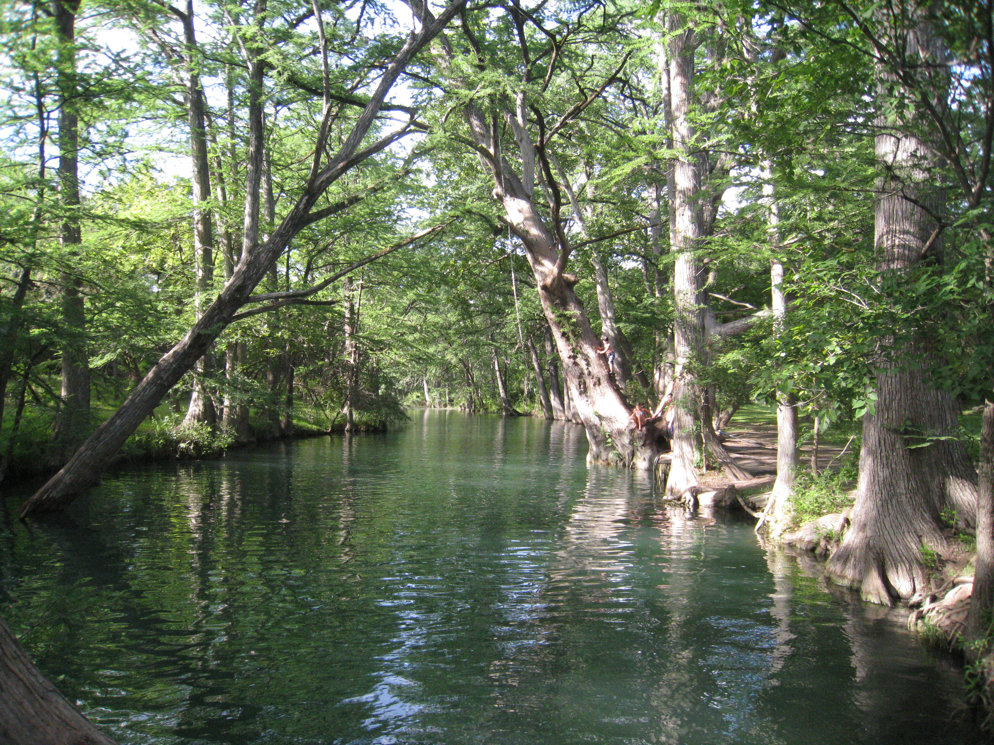 Image result for Blue Hole in Wimberley, Texas